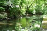 44-alvin-drive-exterio-river-spring-011